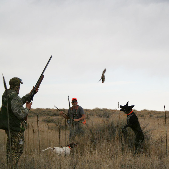 4-2018-hunting